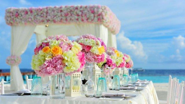 Svatba v létě