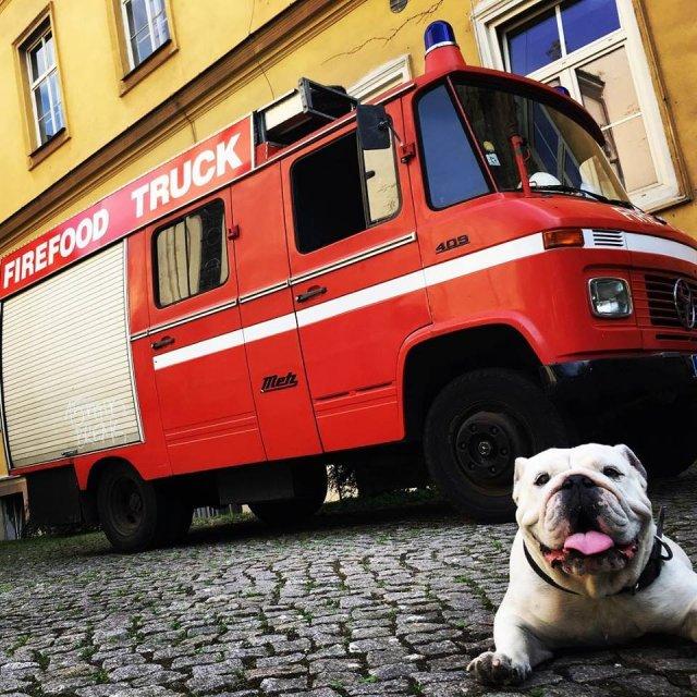 FIREFOODTRUCK