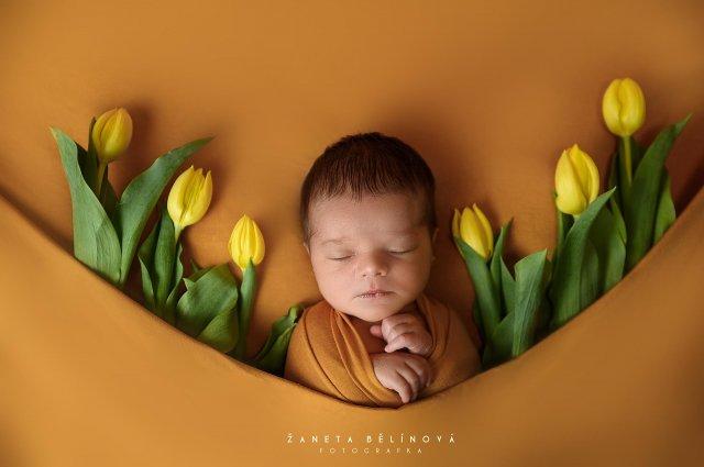 Newborn fotograf Žaneta Bělínová